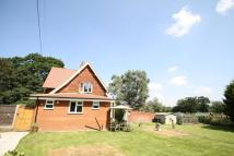 3 bedroom semi detached house for sale in Lyne Grove Cottage...