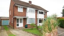 semi detached property to rent in Salwey Crescent...