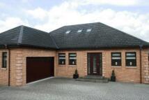 Detached home to rent in Allanton Road, Allanton...