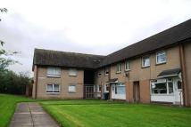 Flat to rent in Ettrick Avenue, Bellshill