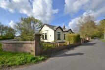 3 bedroom Detached Bungalow in Preston Road...