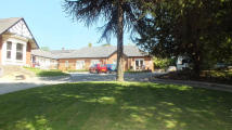 Flat to rent in Elton Lodge Newton Road...