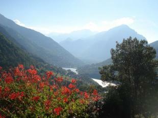 The village of Vauja