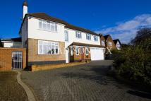 Tycehurst Hill Detached property to rent