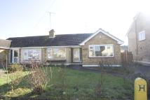 2 bedroom Detached Bungalow in Wells Court, Springfield...