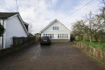 Detached Bungalow to rent in Hoe Lane, Abridge RM4