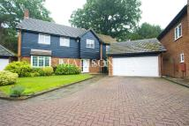 Detached home to rent in Wallers Hoppet, Loughton...