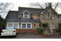 6 bedroom home to rent in Bosworth Road, Cambridge...