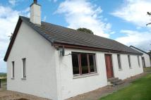 3 bed Bungalow to rent in Beechfield, Newtonhill...