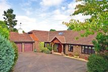 5 bed Bungalow for sale in Harborough Gorse...