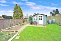 3 bed semi detached house in Tradescant Drive...