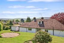 Bungalow for sale in Mill Lane, Storrington...