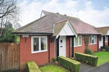 2 bedroom Semi-Detached Bungalow in Holly Close, Hythe, Kent