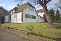 Bungalow for sale in Glenside, Chigwell, Essex