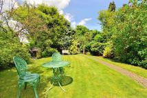 3 bed semi detached house for sale in Little Gaynes Lane...