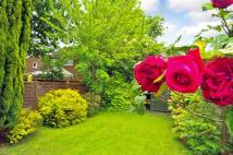2 bedroom semi detached house for sale in Trefoil Close, Horsham...