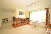 Bungalow for sale in Ghyll Road, Heathfield...