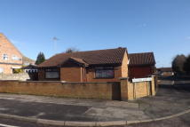Bungalow to rent in Park Hall Road...