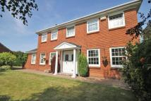 Detached house in Elwyn Place, Cleethorpes