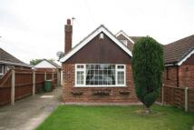 3 bed Semi-Detached Bungalow to rent in THE CROFTS, HUMBERSTON