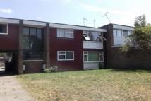 1 bed Flat to rent in Sleddale, HP2