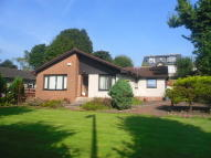 Detached Bungalow in Main Road, Elderslie...