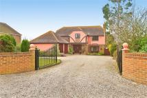4 bed Detached house for sale in Mill Street, St Osyth...