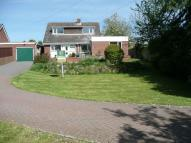 Detached house for sale in Hall Lane, Packington,