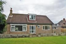 4 bed Detached Bungalow for sale in Sunny Haven, Langthorpe...