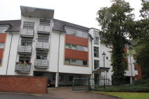 Woodbrooke Grove Apartment to rent