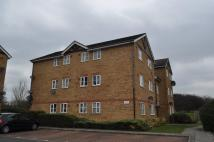 Maplin Park Flat to rent