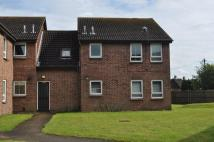 property to rent in Bramber Court, Cippenham
