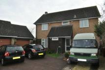 Detached property in Rochfords Gardens, Slough