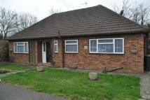 Detached Bungalow in Poplar Close, Colnbrrok