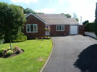 Bungalow for sale in Caefelyn, Norton...