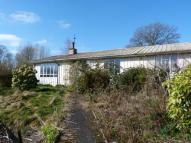 Bungalow in Curdale Close...