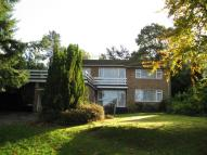 4 bed Detached home to rent in Goldsmiths Avenue...