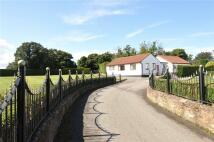 Detached Bungalow in Grange Old Road...