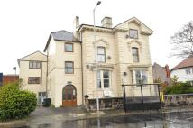 Grove Mansions Flat to rent