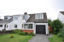 3 bedroom semi detached house to rent in Upton Park Drive, Upton...