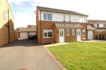 semi detached property to rent in Sycamore Avenue, Upton...