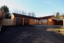 Berrydale  Detached Bungalow for sale