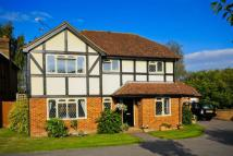 Detached home for sale in Rugosa Road, Woking