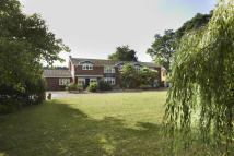 Detached house for sale in Norwich Road...