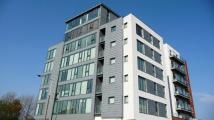Apartment to rent in Malborough Street City...