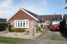 Detached Bungalow for sale in Ilex Close, Rustington...