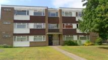 Masons Way Ground Flat to rent