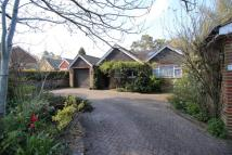 5 bedroom Bungalow for sale in Moore Road...
