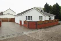 2 bed Detached Bungalow in Wolverhampton Road...