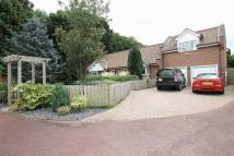 Thornton Vale Detached property to rent